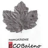 Ecobaleno