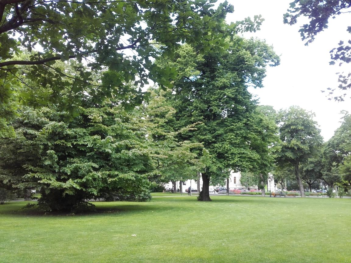 spazi verdi urbani